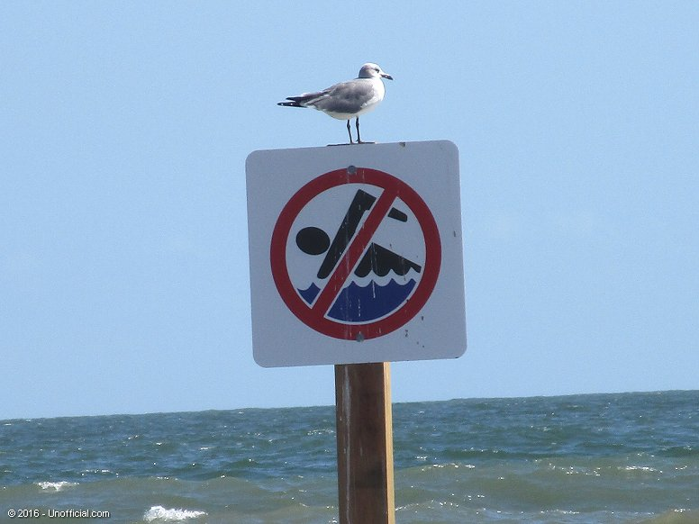 Beach Sign on Galveston Beach, Texas